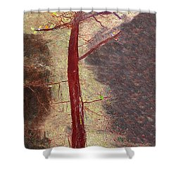 Fall Shower Curtain by Haleh Mahbod