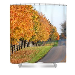 Fall In Horse Farm Country Shower Curtain