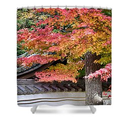 Shower Curtain featuring the photograph Fall In Japan by Tad Kanazaki