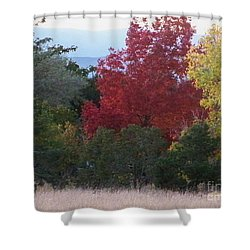 Fall In Santa Fe Shower Curtain by Brian  Commerford