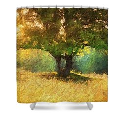 Fall In The Meadow Shower Curtain