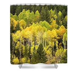 Fall In The Sierras Shower Curtain