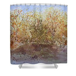 Fall In The Tejas High Country Shower Curtain by Joel Deutsch