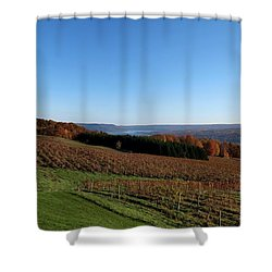 Fall In The Vineyards Shower Curtain