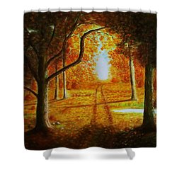 Fall In The Woods Shower Curtain
