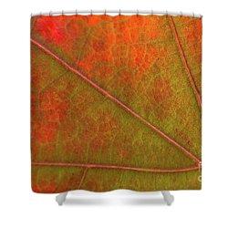 Fall Leaf Jewel Shower Curtain