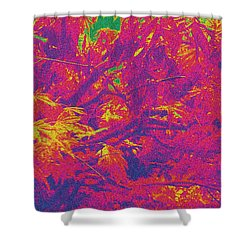 Fall Leaves #14 Shower Curtain