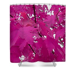 Fall Leaves #5 Shower Curtain
