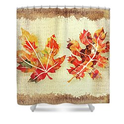 Shower Curtain featuring the painting Fall Leaves Collection by Irina Sztukowski