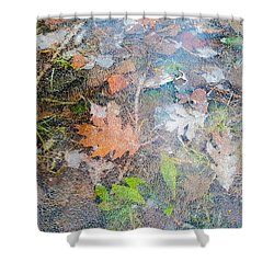 Fall Leaves In A Frozen Puddle Shower Curtain