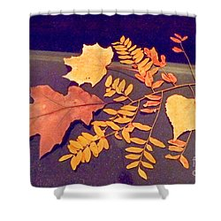 Fall Leaves On Granite Counter Shower Curtain by Annie Gibbons