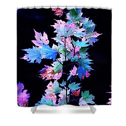Fall Leaves1 Shower Curtain