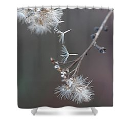 Shower Curtain featuring the photograph Fall - Macro by Jeff Burgess