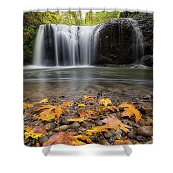 Fall Maple Leaves At Hidden Falls Shower Curtain