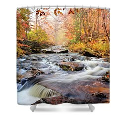 Fall Morning At Gunstock Brook Shower Curtain