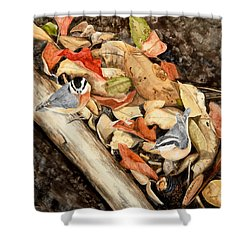 Fall Nuthatch Pair Shower Curtain