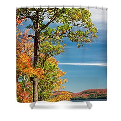 Shower Curtain featuring the photograph Fall Oak Tree by Elena Elisseeva