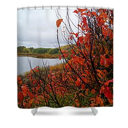 Shower Curtain featuring the photograph Fall On The Lake by Broderick Delaney