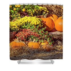 Shower Curtain featuring the photograph Fall Pumpkins by Carolyn Marshall