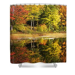 Shower Curtain featuring the photograph Fall Reflection by Chad Dutson