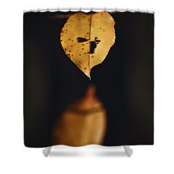 Shower Curtain featuring the photograph Fall Reflections by Eduard Moldoveanu