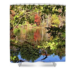 Fall Reflections Shower Curtain by Nancy Landry