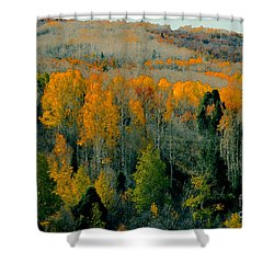 Fall Ridge Shower Curtain by David Lee Thompson
