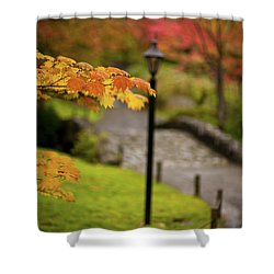 Fall Serenity Shower Curtain by Mike Reid