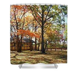 Shower Curtain featuring the photograph Fall Shadows In The Park by Irina Sztukowski