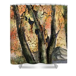 Fall Splendor  Shower Curtain by Annette Berglund