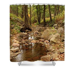 Fall Stream And Rocks Shower Curtain by Roena King