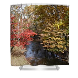 Fall Transition Shower Curtain by Eric Liller