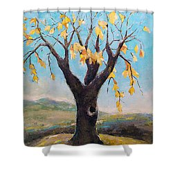 Shower Curtain featuring the painting Fall Tree In Virginia by Becky Kim