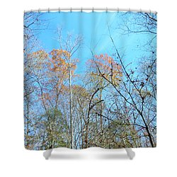 Shower Curtain featuring the photograph Fall Trees by Kay Gilley