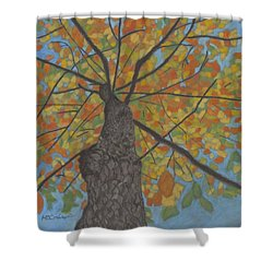 Fall Up Shower Curtain