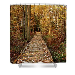 Fall Walk Shower Curtain