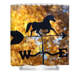 Fall Weather Vane Shower Curtain