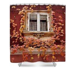 Fall Window,prague Shower Curtain