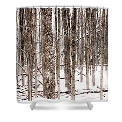 Fallen 5 - Shower Curtain