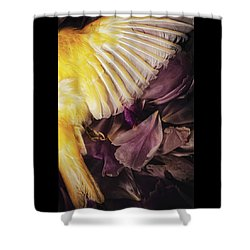 Shower Curtain featuring the photograph Fallen by Amy Weiss