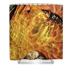 Fallen Autumn Shower Curtain