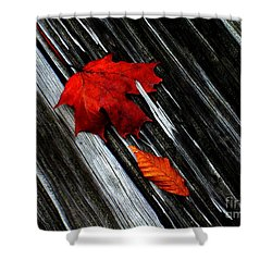 Fallen Shower Curtain by Elfriede Fulda