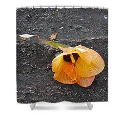 Fallen Flower Shower Curtain