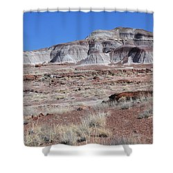 Fallen Giants Shower Curtain