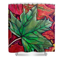 Shower Curtain featuring the painting Fallen Green Maple Leaf In The Fall by Kimberlee Baxter
