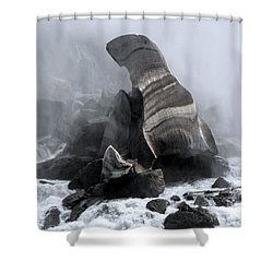 Fallen Ice Shower Curtain