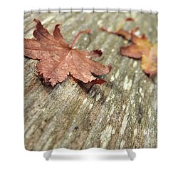 Shower Curtain featuring the photograph Fallen Leaves by Peggy Hughes