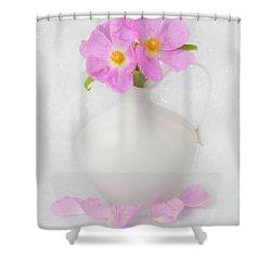 Fallen Petals Shower Curtain