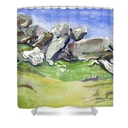 Fallen Stones Shower Curtain