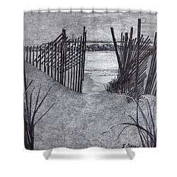 Falling Fence Shower Curtain